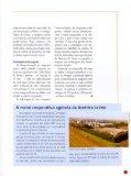 Revista BRF Novembro / Dezembro 2005 Edição 55 Arquivo PDF - Page 7