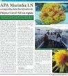 O Jornal do Litoral Norte - Expressão Caiçara - Page 3
