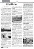 Független hetilap, Újvidék, 2010. november 18. XXI ... - Családi Kör - Page 4