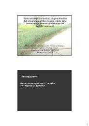 Ruolo ecologico e funzioni biogeochimiche del reticolo idrografico ...