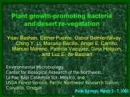 Plant growth-promoting bacteria and desert re-vegetation