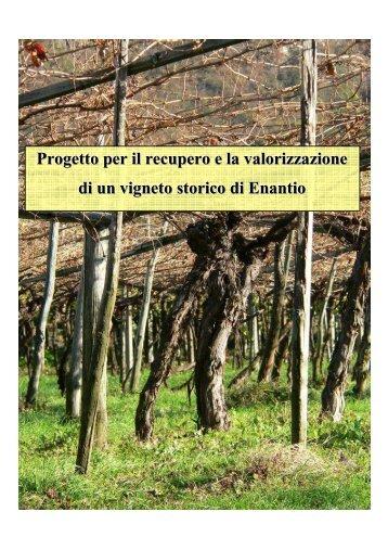 Il Vigneto Storico di Avio - Trentino Wine Blog