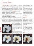 ecorative ainting - Sondra Zacchi - Page 3
