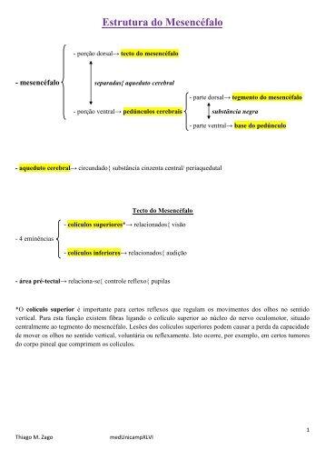 Estrutura do Mesencéfalo