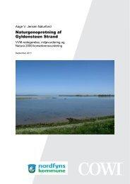 Naturgenopretning af Gyldensteen Strand - Aage V. Jensens Fonde
