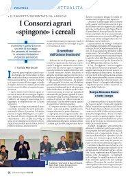 I Consorzi agrari «spingono» i cereali - L'Informatore Agrario