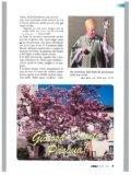 BOLLETTINC) PARROCCHIALE - Parrocchia Pazzalino Pregassona - Page 7