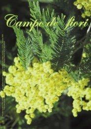 di ricordi - Campo de'fiori
