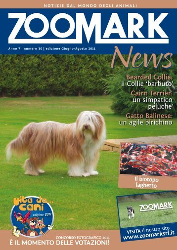Bearded Collie: il Collie 'barbuto' Cairn terrier: un ... - Zoomark srl