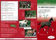Flyer - Westfälisches Pferdestammbuch eV