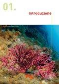 I coralli del Mediterraneo - Oceana - Page 5