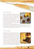 Scarica il catalogo delle paste - Cibi Sublimi - Intro - Page 7