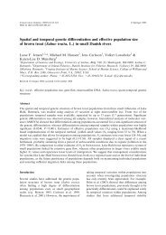 Spatial and temporal genetic differentiation and effective population ...