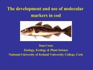 The development and use of molecular markers in cod