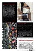 scarica il tuo pdf - Impatto - Page 5