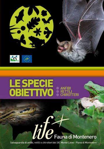 Opuscolo - Life Fauna di Montenero