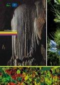 Opuscolo - Life Fauna di Montenero - Page 2
