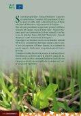 Opuscolo - Life Fauna di Montenero - Page 4