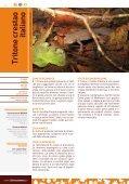 Opuscolo - Life Fauna di Montenero - Page 6