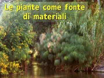 Le piante come fonte di materiali