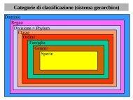 16 Botanica sistematica evolutiva - introduzione+ ... - Autistici