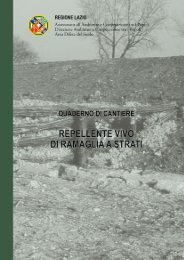 Volume 08.indd - Regione Lazio
