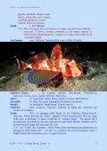 Dizionario del Mare - Vesuvioweb - Page 5