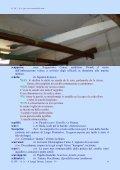 Dizionario del Mare - Vesuvioweb - Page 6