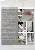 RESTAURO GESSI 02.02.07 - Page 5