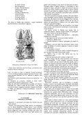 OSSERVAtORIO LEttERARIO - Page 4