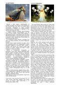 OSSERVAtORIO LEttERARIO - Page 6