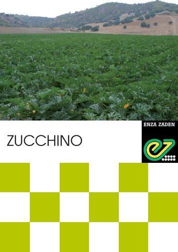 ZUCCHINO - Enza Zaden