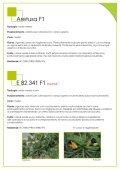 ZUCCHINO - Enza Zaden - Page 3