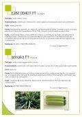 ZUCCHINO - Enza Zaden - Page 4