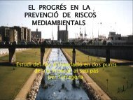 Risc d'inundacio al Francolí - XTEC Blocs
