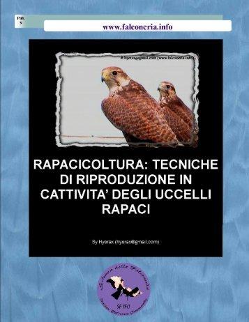 Rapacicoltura: tecniche di riproduzione in cattività ... - Falconeria.info