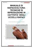 Rapacicoltura: tecniche di riproduzione in cattività ... - Falconeria.info - Page 2