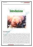 Rapacicoltura: tecniche di riproduzione in cattività ... - Falconeria.info - Page 5