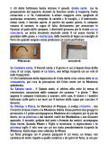 Istituto Comprensivo Siliqua - istituto comprensivo statale di siliqua - Page 6