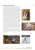 Opuscolo - Comunità Montana delle Prealpi Trevigiane - Page 7