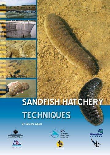 Sandfish hatchery techniques - English version - ACIAR