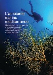 L'ambiente Marino Mediterraneo - Pubblicazione in ... - Mo-mar.net