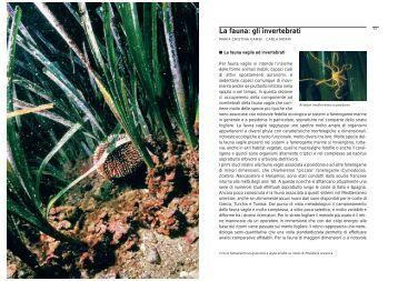 2° parte - Udine Cultura
