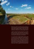L'incantevole Baranja - Business - Hrvatska turistička zajednica - Page 4