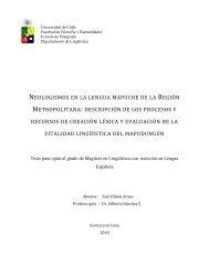neologismos en la lengua mapuche de la región metropolitana