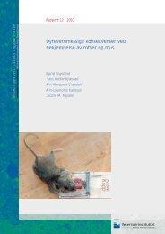 Dyrevernmessige konsekvenser ved bekjempelse av rotter og mus