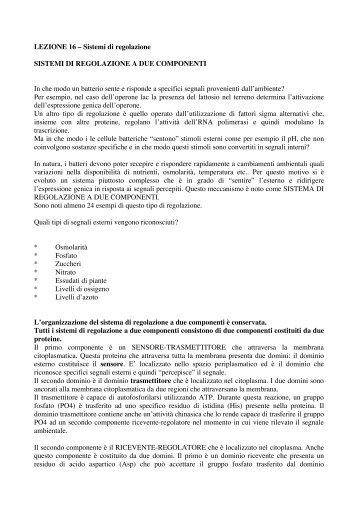 (16)AppLez16.pdf