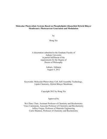 auburn university thesis search