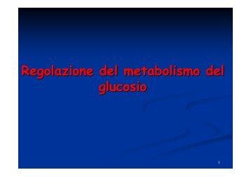 Regolazione del metabolismo del glucosio