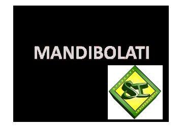 14 MANDIBOLATI - Studenti-Indipendenti